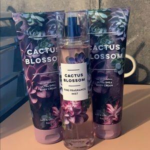 BBW Cactus Blossom